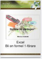Boken Formel 1-förare i Excel