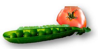 Tomat och ärtor