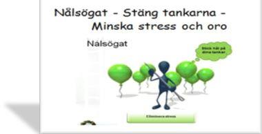 Nålsögat online-kurs