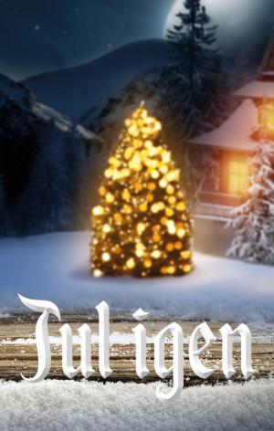 Framsidan - Jul igen
