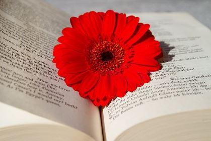 Blomman i boken