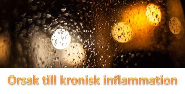 Orsak kronisk inflammation