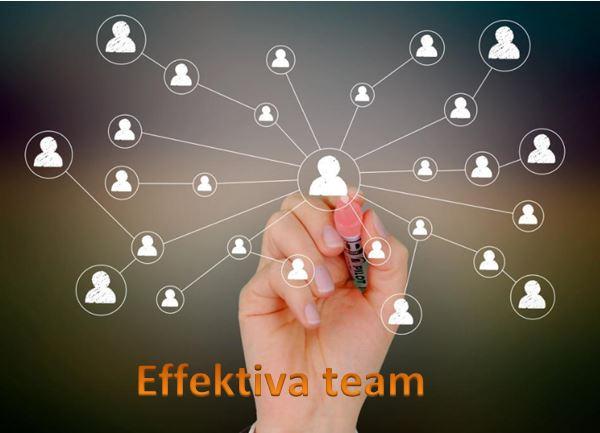 Effektiva team
