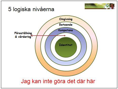 5 logiska nivåer