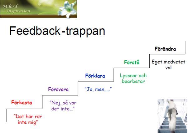 Feedback-trappan